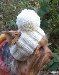 best 25 gifts for dogs ideas on pinterest holidays for dogs