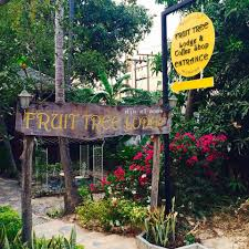fruit tree lodge coffee shop home ban koh lanta krabi