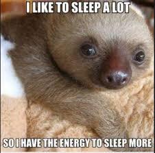 Sloth Jokes Meme - sloth jokes 2 jokesaz com