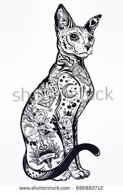 vintage style beautiful gothic cat body stock vector 666882712