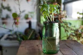 how to create a diy self watering planter for the home u2014 homestead
