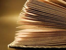 ryan holiday picks the best books of 2014 observer