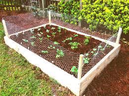 Home Gardening Ideas Lovely Backyard Home Gardening For Vegetables Simple Vegetable