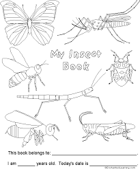 insect book cover enchantedlearning com