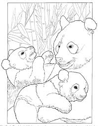 baby panda coloring pages bestofcoloring
