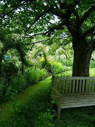 Old Park Benches Garden Benches Seats