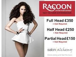 racoon hair extensions 8 best racoon hair extensions images on extensions