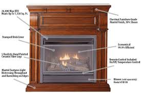 Dual Gas And Wood Burning Fireplace by Duluth Forge Dual Fuel Ventless Fireplace 26 000 Btu Remote