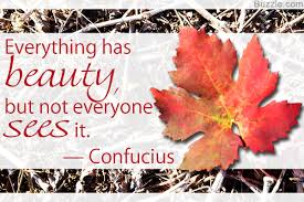 quotes about beauty in you cute life quotes that will instantly make you smile