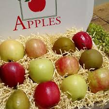 fruit gift boxes small fruit gift box flinchbaugh s orchard farm market
