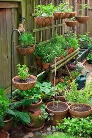 multilevel container garden via growing raw garden pinterest