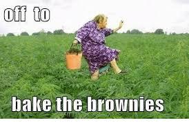 Baking Meme - off too bake the brownies baked meme on me me