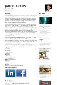 Ppc Resume Sample by Business Development Director Resume Samples Visualcv Resume