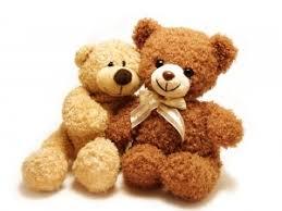 feel better bears feel better bears wmas fm