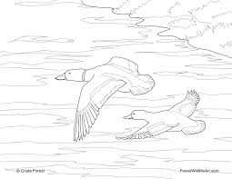 coloring pages quebec