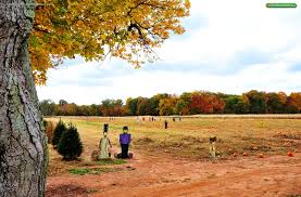 Pumpkin Picking Places In South Jersey by Fall Festival U2013 Snyders Farm