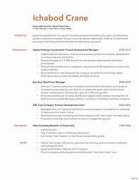 resume bullet points exles resume bullet points exles luxury bullet point resume punctuation