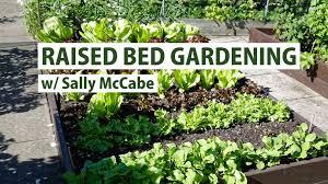 raised bed gardening primex garden center