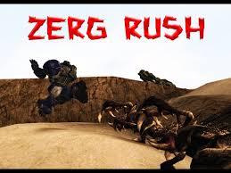 Zerg Rush Meme - omg zerg rush by dragoshi1 on deviantart