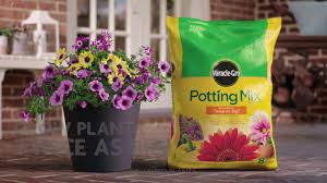 Soil Mix For Container Gardening - how to use miracle gro potting mix for container gardening youtube