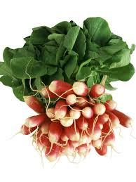 types of radishes hgtv