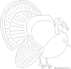 coloring pages delightful thanksgiving coloring pages enchanted