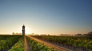 wine from château lynch bages exclusive owners of bordeaux s château lynch bages buy haut