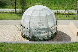 this bubble shaped greenhouse is filled with medicinal healing