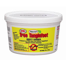 tanglefoot tree insect barrier 15 oz tub ready to use 300000684