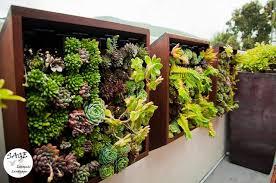 Vertical Garden For Balcony - can you make your own balcony garden