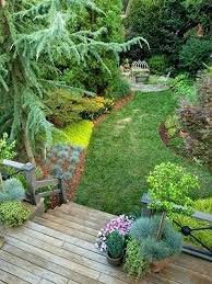Backyard Plants Ideas Backyard Tree Ideas Beautiful Backyards Backyard Tree Planting