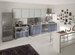 The Simplicity Of Stainless Steel Kitchen Cabinets  Decor Trends - Kitchen steel cabinets