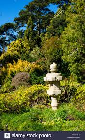Botanical Garden Golden Gate Park Japanese Lantern San Francisco Botanical Garden Golden Gate Park