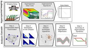 Plant Disease Journal - metro maps of plant disease dynamics u2014automated mining of
