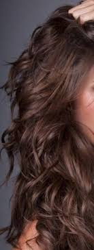 gorgeous hair i love the pretty brown color with warm and cool chocolate browns hmmm this makes me really want to