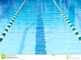 trivia how many lanes does a standard olympic swimming pool have