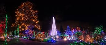 Vandusen Botanical Garden Lights 5 Reasons Why Vandusen Festival Of Lights Is The