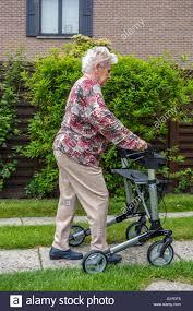 senior walkers with wheels elderly woman with rollator wheeled walker practising walking on