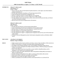 resume professional writers rpw reviews for spirit project specialist resume sles velvet jobs