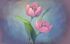 tulip sketch by satiiiva on deviantart
