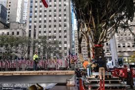 photos rockefeller center plaza christmas tree arrives in new york
