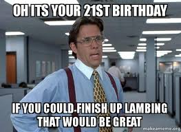 21st Birthday Meme - oh its your 21st birthday if you could finish up lambing that
