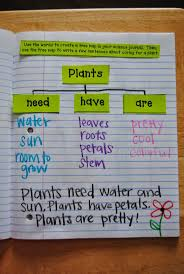 the 25 best science journals ideas on pinterest 4th grade