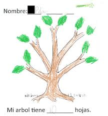 spanish thanksgiving words parts of a tree in spanish spanish simply