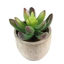 Decorative Indoor Plants | winomo decorative indoor plants succulent artificial succulent fake
