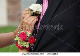 pink corsages for prom corsage stock images royalty free images vectors