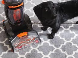 Best Vacuum For Dog Hair On Hardwood Floors Best Vacuum For Getting Rid Of Dog Hair