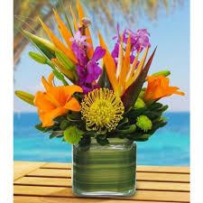 florist ta flower delivery ta fl the best flower in 2017