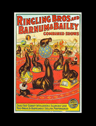 Barnes And Bailey Circus 31 Best Ringling Bros Barnum U0026 Bailey Circus Images On Pinterest