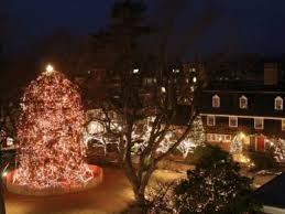 christmas lights events nj christmas tree lighting in princeton kicks off holiday season